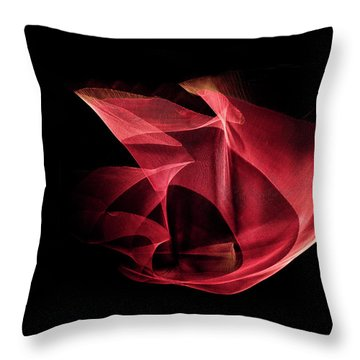 Something In The Sky Throw Pillow