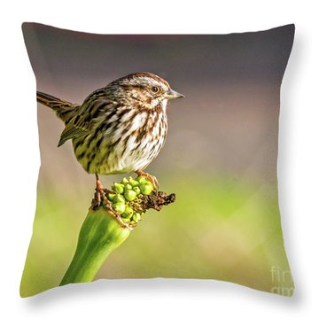 Songster Perching Throw Pillow