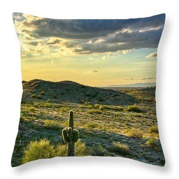 Sonoran Desert Portrait Throw Pillow