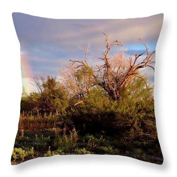 Sonoran Desert Spring Rainbow Throw Pillow