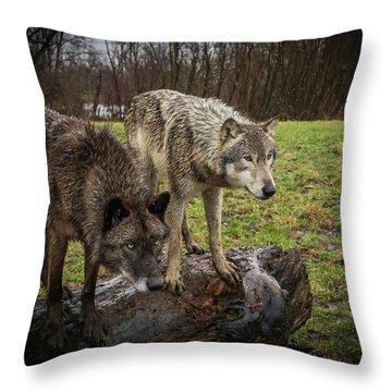 Sort Of Twins Throw Pillow