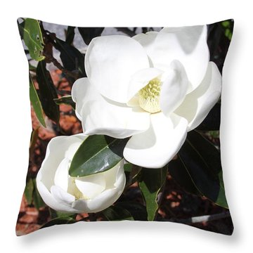 Sosouthern Magnolia Blossoms Throw Pillow