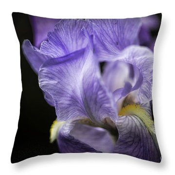 Soul Blossom - Blue Bearded Iris  Throw Pillow
