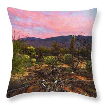 Southwest Day's End Throw Pillow