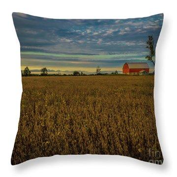 Soybean Sunset Throw Pillow