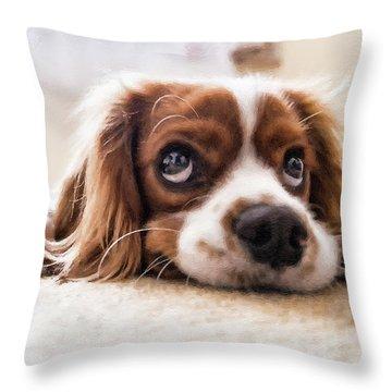 Spaniel Puppy Dwp2785074 Throw Pillow