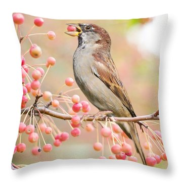 Sparrow Eating Berries Throw Pillow