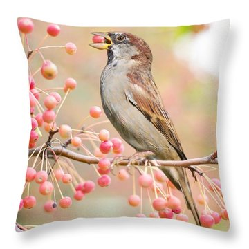Throw Pillow featuring the photograph Sparrow Eating Berries by Top Wallpapers