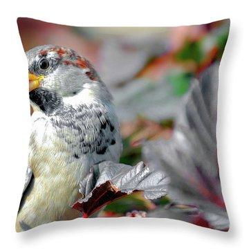 Sparrow Profile Throw Pillow