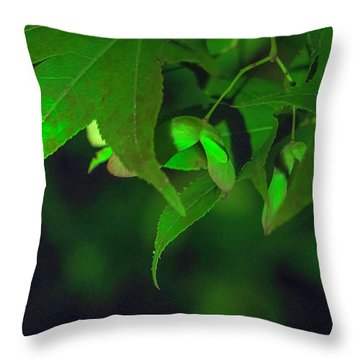Spider At Night On A Leaf Throw Pillow