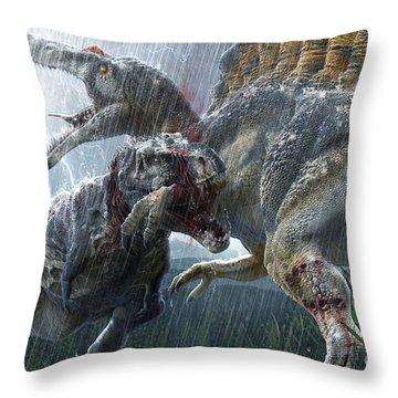 Gigantic Throw Pillows