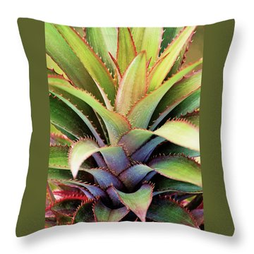 Throw Pillow featuring the photograph Spiny Succulent I by Leda Robertson