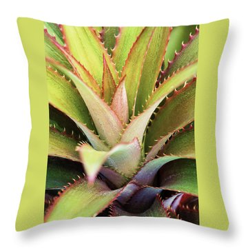 Throw Pillow featuring the photograph Spiny Succulent II by Leda Robertson