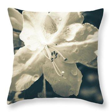 Split Tone White Rhododendron Throw Pillow