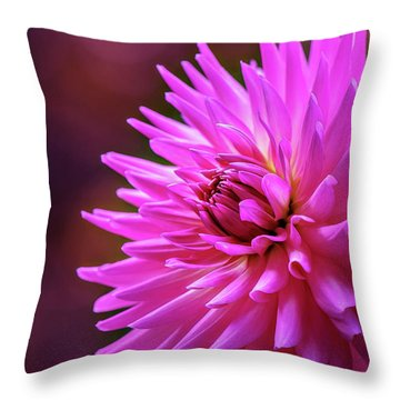 Throw Pillow featuring the photograph Spotlight On Dahlia by Mary Jo Allen