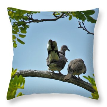 Spotted Doves Pair Throw Pillow