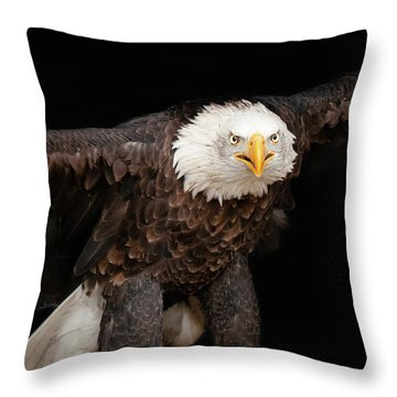 Spread Your Wings And Fly Throw Pillow