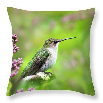 Spring Beauty Ruby Throat Hummingbird Throw Pillow