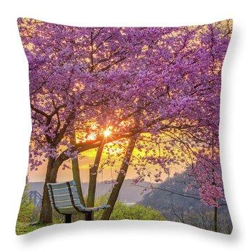 Spring Bench In Beaver 2 Throw Pillow