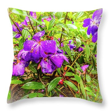 Spring Blossoms2 Throw Pillow