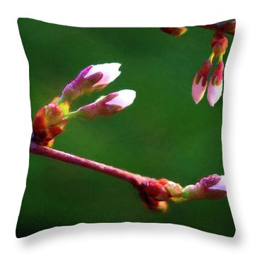 Spring Buds - Weeping Cherry Tree Throw Pillow