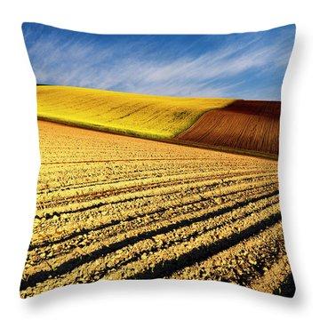 Spring Fields Throw Pillow