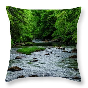 Spring Fishing Along Cranberry River Throw Pillow