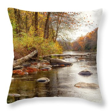 Spring Hole #2 Throw Pillow