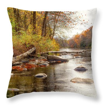 Spring Hole #2 Throw Pillow