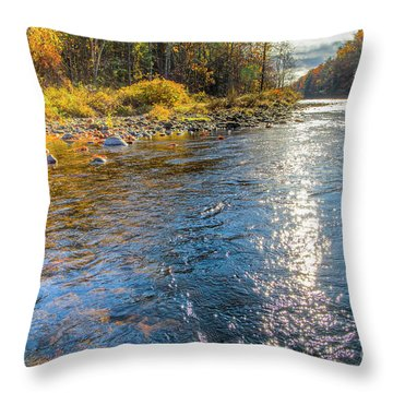 Spring Hole Throw Pillow