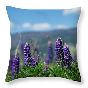 Spring Lupines Throw Pillow