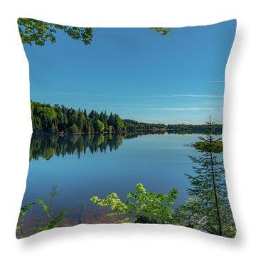 Spring Morning On Grand Sable Lake Throw Pillow