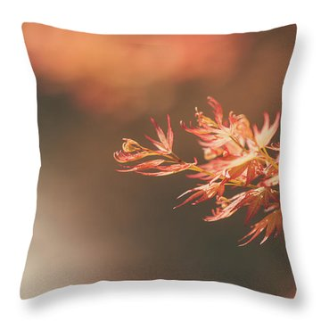 Throw Pillow featuring the photograph Spring Or Fall by Dheeraj Mutha