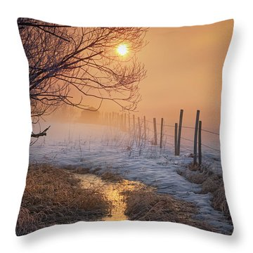 Spring Time In Alberta Throw Pillow