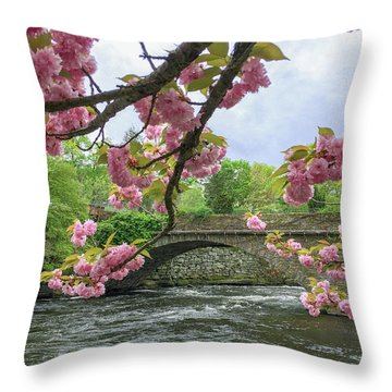 Spring Time In Windham  Throw Pillow