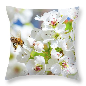 Springtime Buzz Throw Pillow