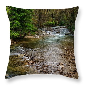 Springtime Gauley River Headwaters Throw Pillow