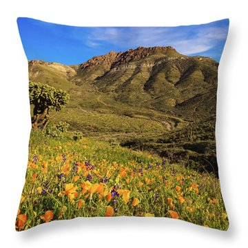 Springtime In The Desert Southwest Throw Pillow