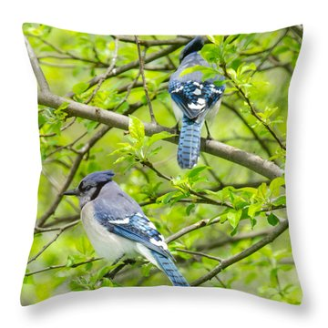 Springtime Pairs Throw Pillow