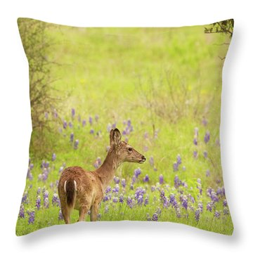 Springtime Whitetail Throw Pillow