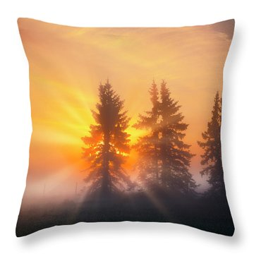 Spruce Trees In The Morning Throw Pillow