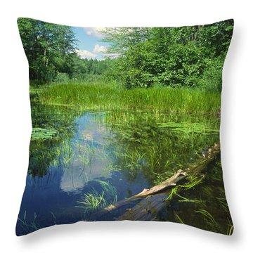 Squaw Lake Throw Pillow