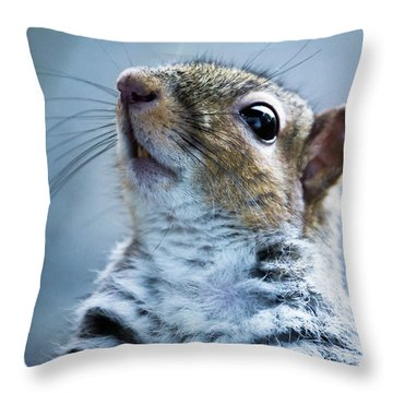 Squirrel With Nose In The Air Throw Pillow