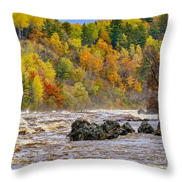 St. Louis River At Jay Cooke Throw Pillow