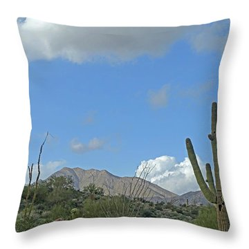 Throw Pillow featuring the photograph Staged Beauty  by Lynda Lehmann