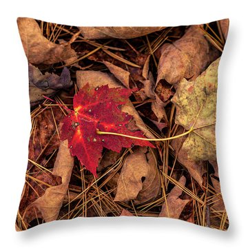 Stand-out Throw Pillow