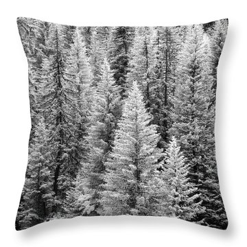 Standing Tall In The French Alps Throw Pillow