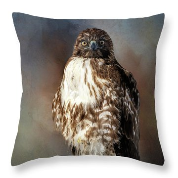 Stare Down With A Hawk Throw Pillow