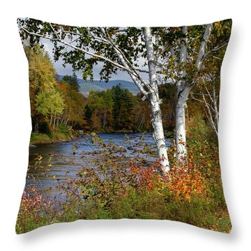 Throw Pillow featuring the photograph Stark, Nh Fall White Birch  by Betty Pauwels