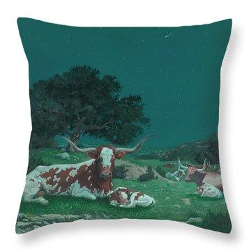 Stars Over Texas Throw Pillow